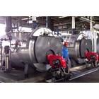 Steam Boiler fire tube 4