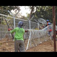 Razor Wire Pagar