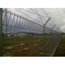 cheap brc fence