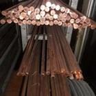 Copper Grounding Rod 1