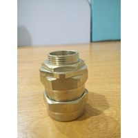 CW Cable Gland cw 25 L