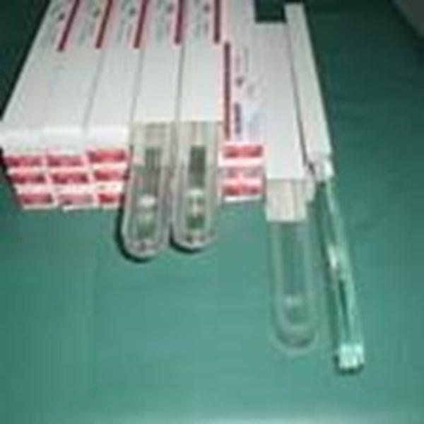 Sight Glass Tipe A9 atau B11  ( 085782614337 )