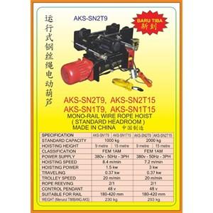Hoists SN2T9