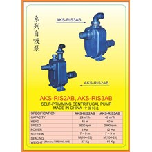 Alat Alat Mesin Self-Primming Centrifugal Pump RIS2AB