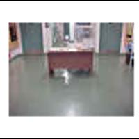 Epoxy Flooring PU 1