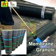 MEMBRANE GRANULE