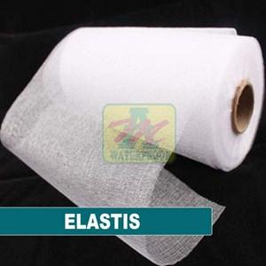 ELASTIS