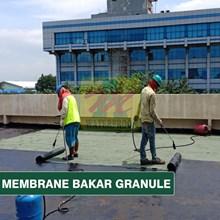 MEMBRANE BAKAR GRANULE