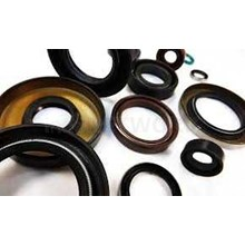 Oil Seals Brands Dan Custom