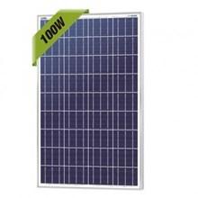 Panel Surya 100watt (Solar Module)