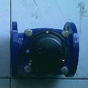 Flow Meter Amico LXLG-80E