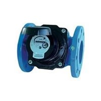Flow meter itron type woltex cast iron PN 10 Dn 1