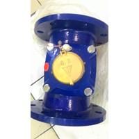 BR water meter LXLG