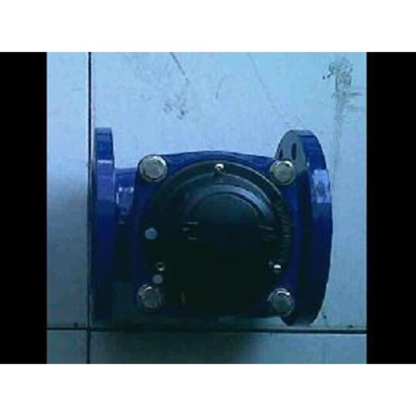 amico water meter LXLG