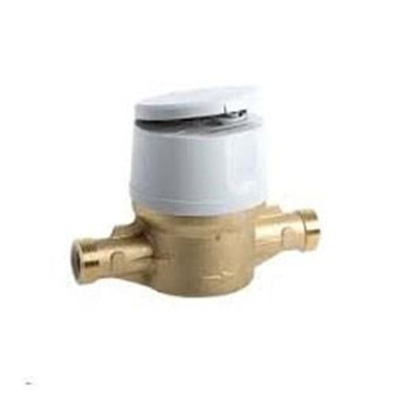 Water Meter Actaris Flodis