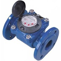 Water Meter Powogaz 5 inch 125mm