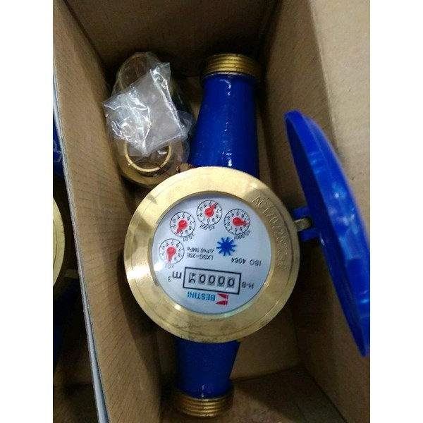 Water Meter Bestini 1 inch 25mm