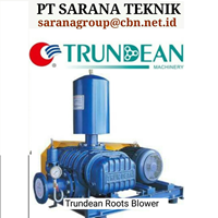 Jual Blower Trundean Tipe Roots