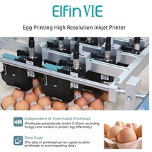 Elfin VIE Egg Printing High Resolution Inkjet Prin
