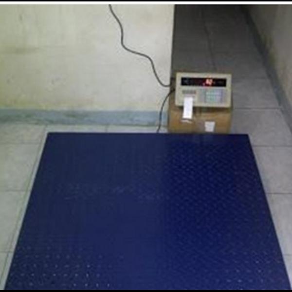 Scales Floor A9