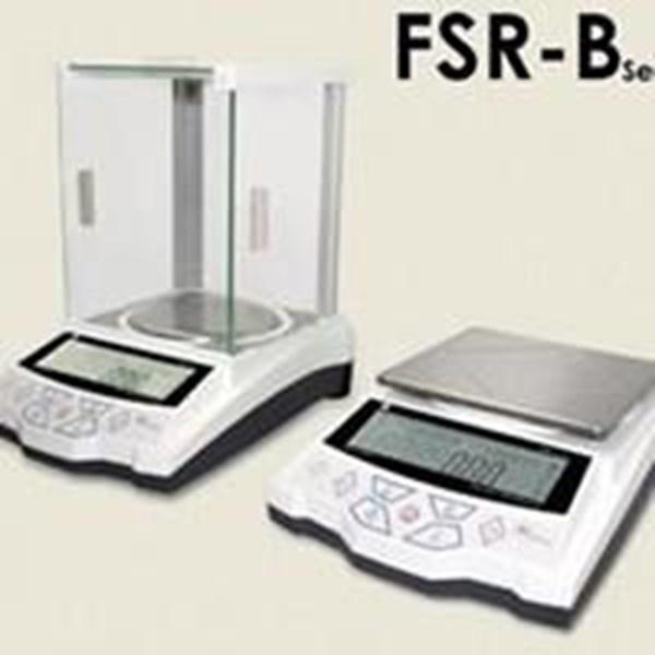 The Scales Of The Fujitsu Fsr-B [Japan]