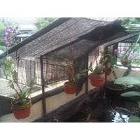 Distributor Produk Plastik Pertanian Paranet Untuk Anggrek Di Surabaya  3