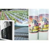 Jual Produk Plastik Pertanian Mulsa Pertanian Termurah  2