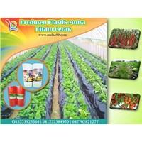 Produk Plastik Pertanian Mulsa Hitam Perak  1