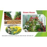 Tanaman Hidroponik Plastik Uv Grenhouse  1