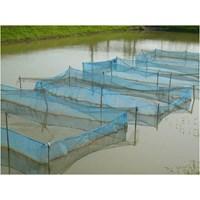 Produk Plastik Pertanian Jaring Polinet Untuk Ikan