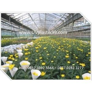 Plastik Uv 14% Kebun Bunga