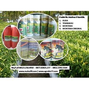 Produk Plastik Pertanian Mulsa Paling Laris Dan Awet