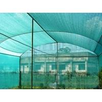 Kasa Nyamuk Untuk Greenhouse Tanaman  1