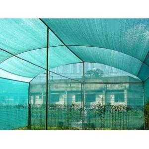 Kasa Nyamuk Untuk Greenhouse Tanaman