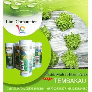 Plastik Mulsa Tembakau 50/100 16Kg