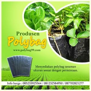 Plastik Polybag Large 081232584950