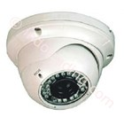 Vandalism Dome CCTV Camera 1