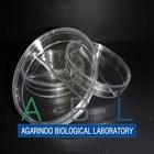 Alat Laboratorium Umum Petri Dish 4