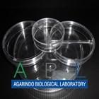 Alat Laboratorium Umum Petri Dish 3