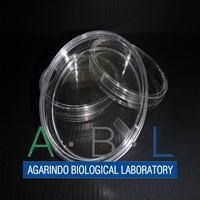 Alat Laboratorium Umum Petri Dish