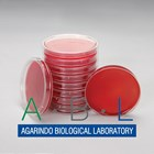 Blood Agar Base Ready2use 1