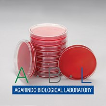 Blood Agar Base Ready2use