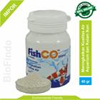 Pakan Ikan Fishco Pond botol 40 gram 1