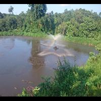 Lagoon Di Pabrik Kelapa Sawit By Poly Stamino Indonesia