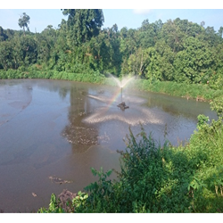 Lagoon Di Pabrik Kelapa Sawit
