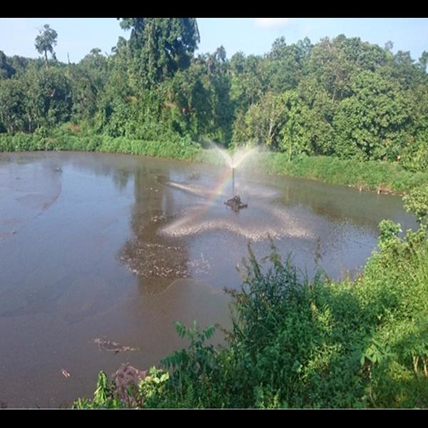 Lagoon Di Pabrik Kelapa Sawit By PT. Poly Stamino Indonesia