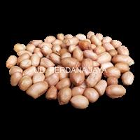 Jual Kacang Tanah