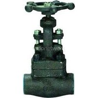 Globe Valve A105 Forged Steel 1