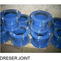 Dreser Joint 1