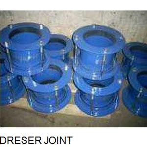 Dreser Joint